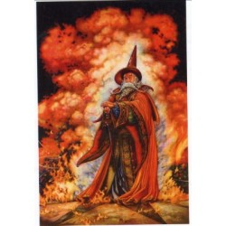 Fire Wizard HAED 1246