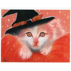 Kitty Witch HAED 15