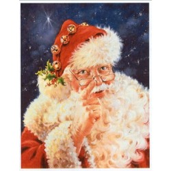 Old St Nick HAED 9827