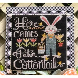 HERE COMES PETER COTTONTAIL Stitching With The Housewives